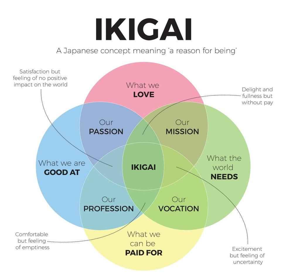 high school researcher guide to ikigai